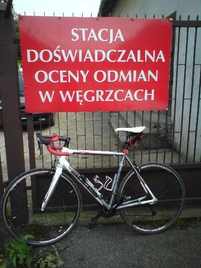 Takie rzeczy tylko w Węgrzcach!