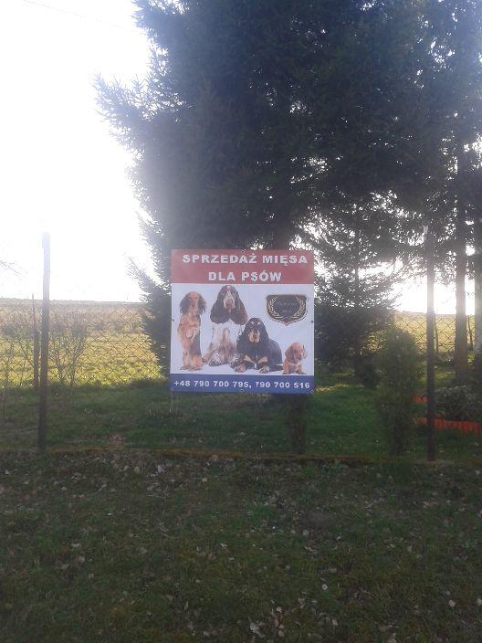 Mięcho dla psów do kupienia w Pielgrzymowicach.